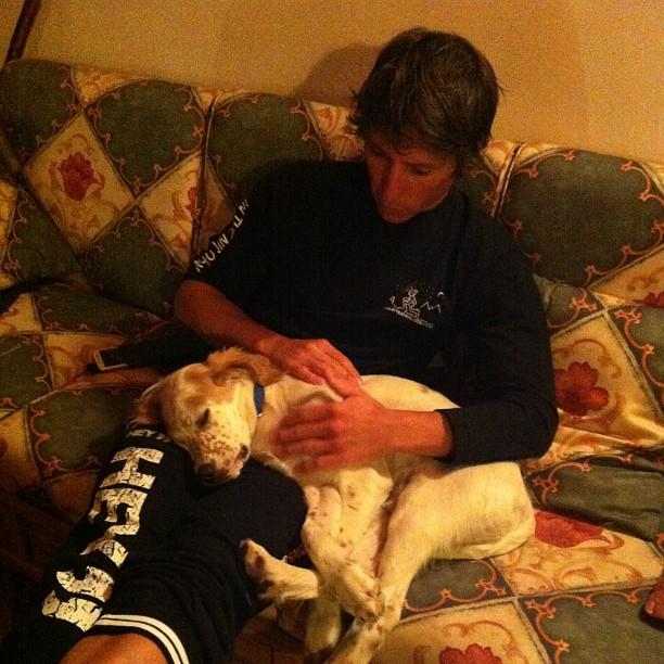 Simone with sleepy puppy #englishsetter