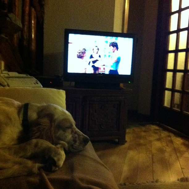 Back home in my little house watching the epic dirty dancing with my puppy..what more could I ask for !!!!!