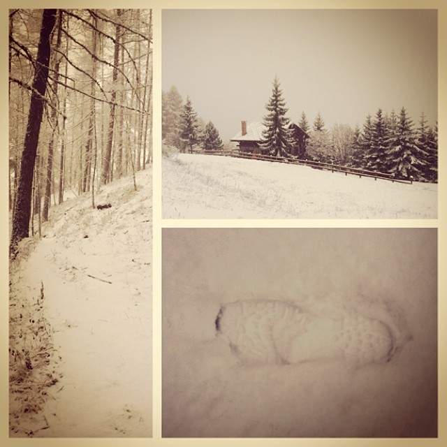 My early morning walk with a difference... Nevica yipee!!!