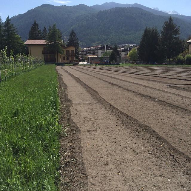 Field is ready for the big potato plant tomorrow!!! #cascinagenzianella #skisauze