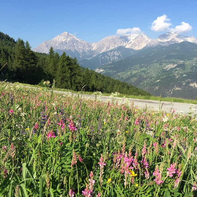 No need to comment, this is my garden in the summer, I love my home#skisauze #hotelstellalpina #sauzedoulx