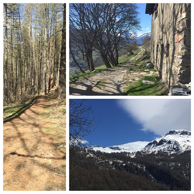 Lucky to live in these wonderful mountains#hotelstellalpina #sauzedoulx #cascinagenzianella #oulx