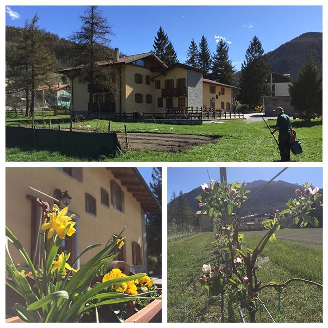 Springtime at the #cascinagenzianella #oulx